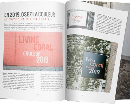 Magazine avec articles sur la couleur pantone 2019